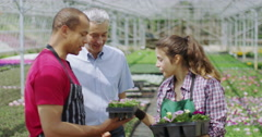 4K Portrait of smiling business manager & staff in large plant nursery Stock Footage