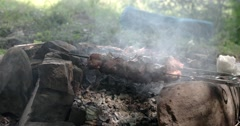 Meat Prepares on Metal Skewers on Coals Outdoors Stock Footage
