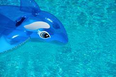 Summer holiday background Stock Photos