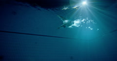 Underwater view of a professional male swimmer diving into deep blue water Stock Footage