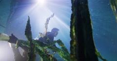 Nderwater businessman swimming amongst the seaweed in deep blue water Stock Footage