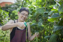 Woman harvesting home garden vegetable happiness emotion Stock Photos