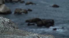 Beach Rock to Sea Rocks Focus 4K Stock Footage