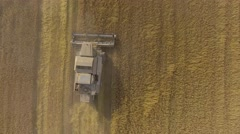 Harvester gathers the grain harvest Stock Footage