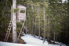Austria, Salzburger Land, Maria Alm, Old wooden treehouse in snowy forest Stock Photos