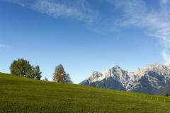 Austria, Salzburger Land, Maria Alm, Meadow with mountains in distance Stock Photos