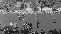 Sacramento County fair 1938: farmers showing horses Stock Footage