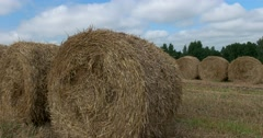 Haystacks close up, wildlife preserve, Russia Stock Footage