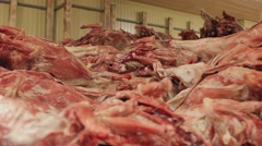 Carcasses of deers in row in meat factory  Stock Footage