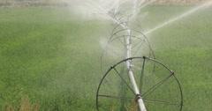 Farm crop water irrigation green field DCI 4K Stock Footage