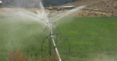 Farm field green crop water irrigation DCI 4K Stock Footage
