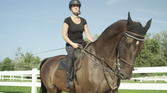CLOSE UP: Young dressage female rider riding brown stallion in riding arena Stock Footage