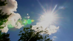 Windy sky with tree Stock Footage
