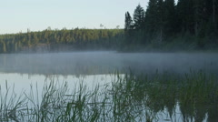 Fog blows over swampy lake Stock Footage