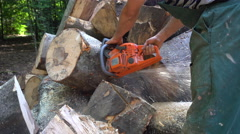 Woodcutter Chopping the Woods Stock Footage