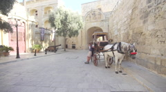 Horse cart canon walk past old town Stock Footage