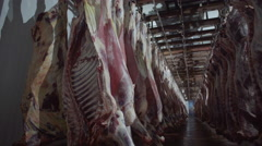 Meat carcasses Stock Footage
