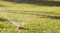 Young girls playing jumping in a garden water lawn sprinkler Stock Footage