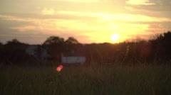 Sunset over trees in Manassas Stock Footage