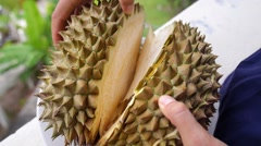 Exotic Tropical Fruit Durian Closeup Stock Footage