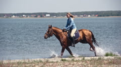 Fast Russian Don Horse Galloping on Water Stock Footage