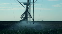 Agriculture Irrigation system with drop sprinklers Stock Footage