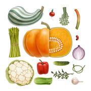 Vegetables Piirros