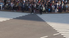 Congested Tokyo Shibuya Intersection (scramble Intersection) Stock Footage