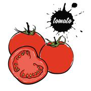 Vegetables red tomato Stock Illustration