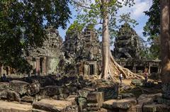 Ta Prohm temple, Angkor area, Siem Reap, Cambodia Stock Photos