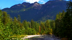 4K Mountain Landscape Fir Trees, River and Maple Tree Forest Foreground Stock Footage