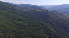 A karpathian evergreen mountain in Ukraine Stock Footage