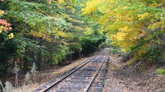 New England foliage, railway track in the forest Stock Footage
