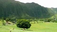 Koolau mountains Oahu Hawaii Stock Footage