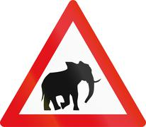 Road sign used in the African country of Botswana - Elephants Stock Illustration