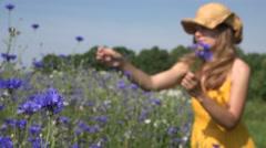 Romantic woman reap cornflower flowers in bouquet in field. 4K Stock Footage
