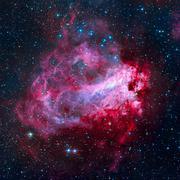 The Omega Nebula - Swan Nebula in the constellation Sagittarius. Stock Photos