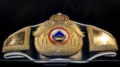 Kyiv, Ukraine - October 11, 2015: Boxing WBO championship belt Stock Photos