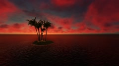 Sunrise in Ocean with Palm Trees in Island Nature Background Video Stock Footage