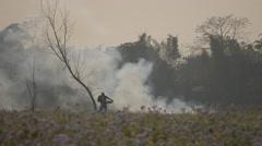 Woman with basket walking trhough burning field,Chitwan,National Park,Nepal Stock Footage