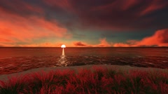 Sun Rise Scene in Ocean with Red and Yellow Clods and Flowers on Beach Stock Footage