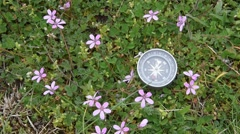 Compass that turn and stops Stock Footage
