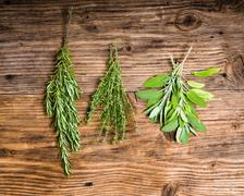 Rosemary, thyme and sage herbs Stock Photos