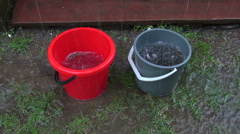 Rain water running into buckets Stock Footage