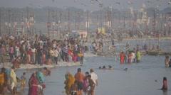 Pilgrims bathing in holy river with birds  at Sangam,Allahabad,Kumbh Mela,India Stock Footage