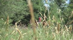 Horseback Rider Slider Shot Beautiful Grass Field Slow Motion Stock Footage