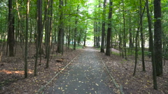 First-person view of movement on forest trail Stock Footage