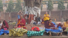 Tibetan monks excercise praying,BodhGaya,Mahabodhi Temple Complex,India Stock Footage