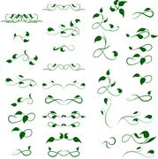 Text divider, floral decor element Stock Illustration