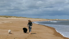 Pretty young woman exercising her dogs on a beach. Stock Footage